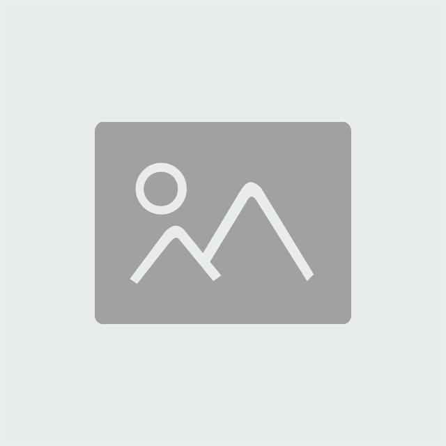Zero limite - Joe Vitale et Ihaleakala Hew Len