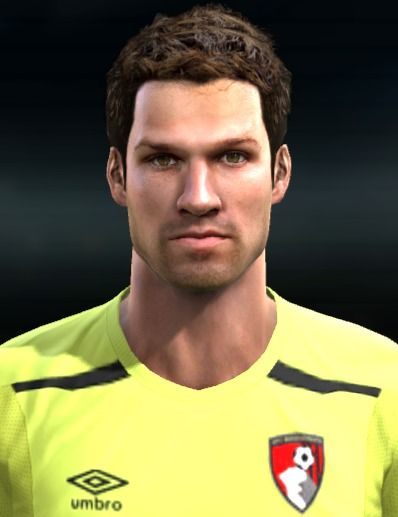 Asmir Begovic (AFC Bournemouth)