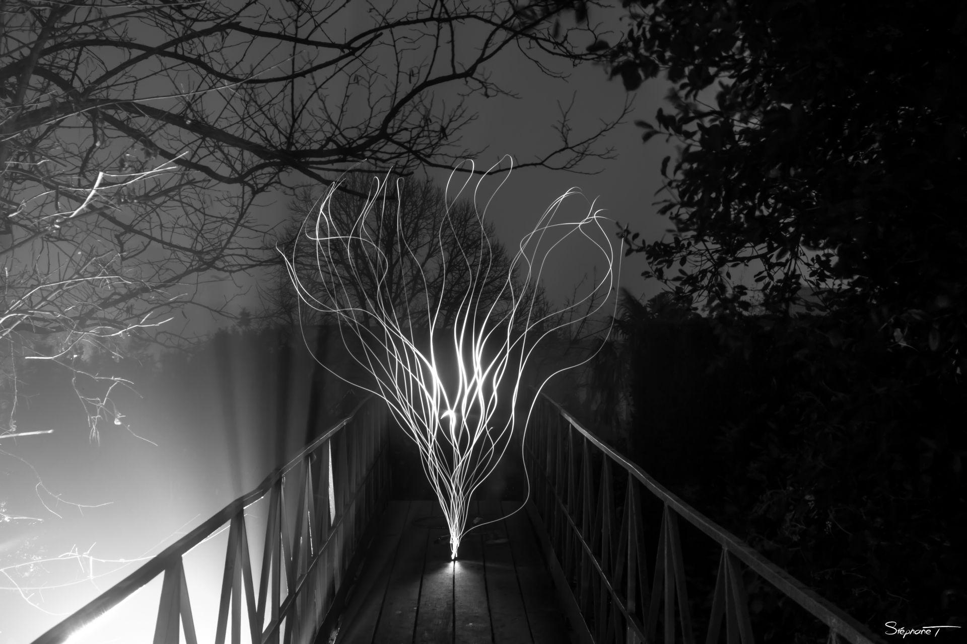 Light Painting en noir et blanc par Stéphane T.