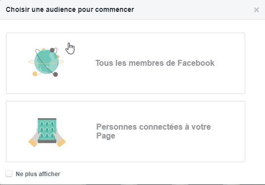 Facebook audience insight
