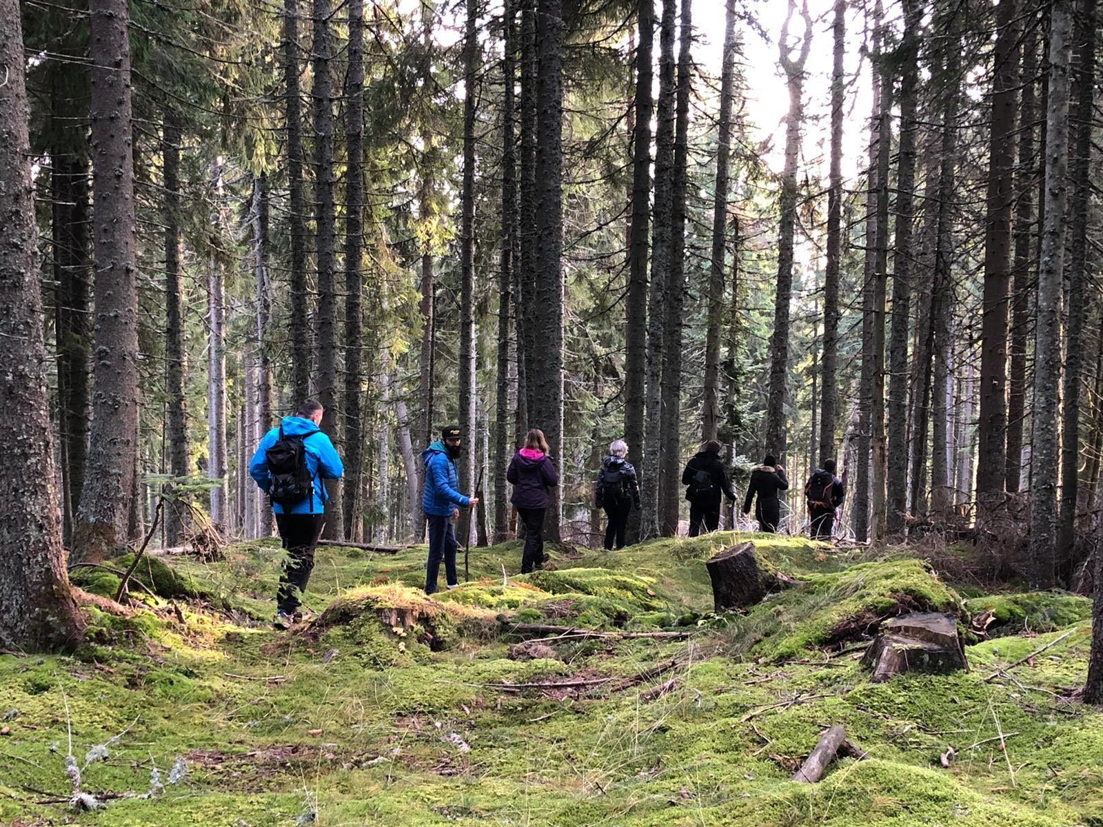 Evadare în natură, cu familia în Apuseni