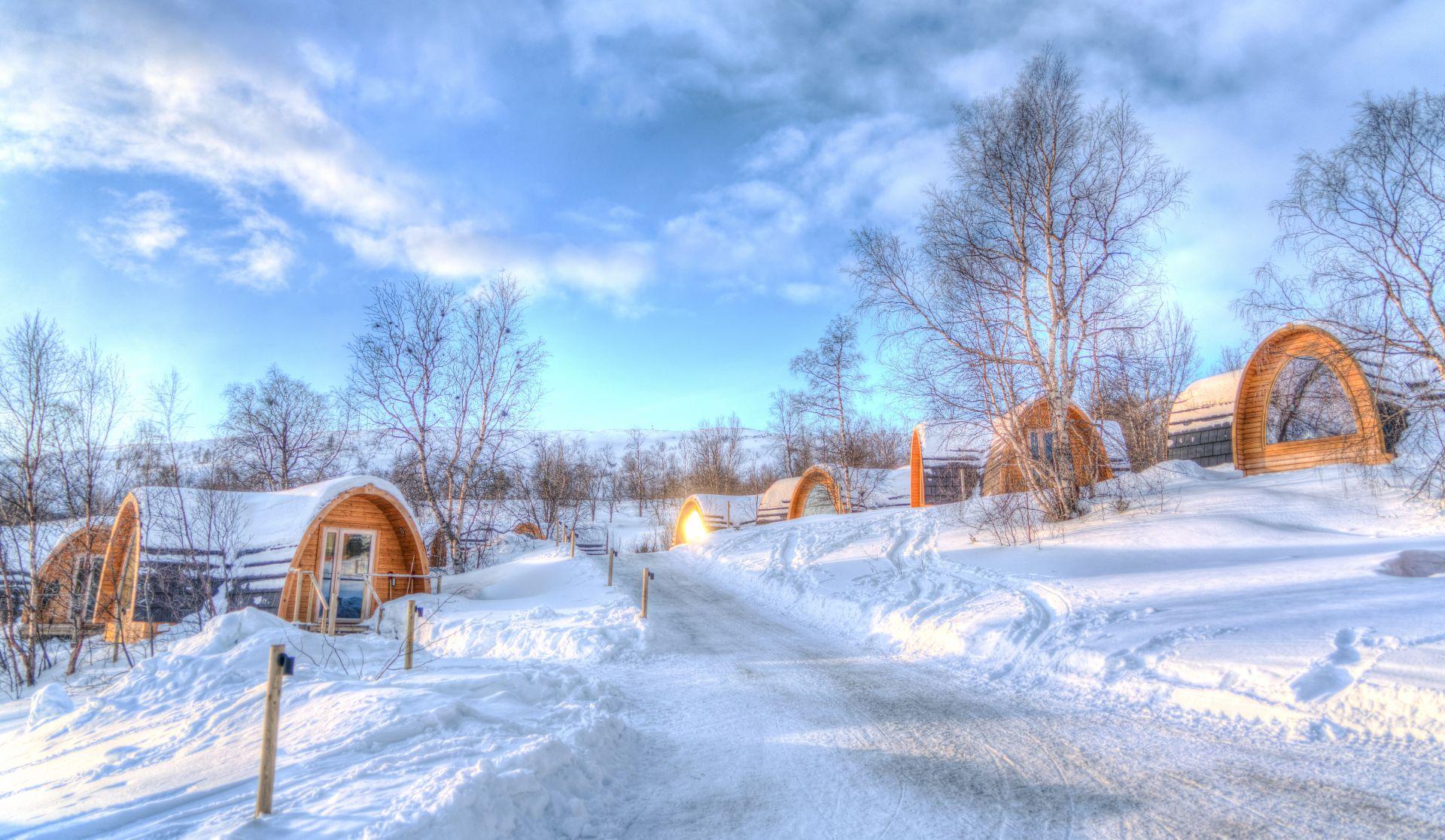 Aurore boreale și croazieră polară în Norvegia