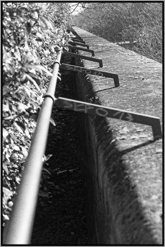 CR d'une balade sur la coulée verte (Paris) 52f1043a5a656
