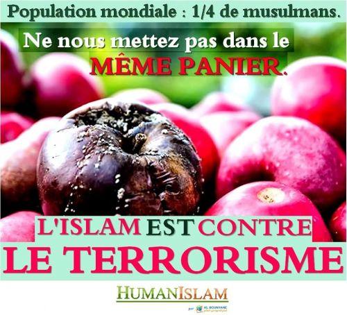 L'Islam est contre le terrorisme
